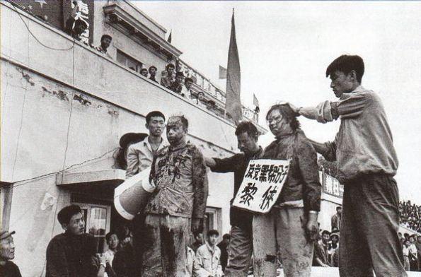 mao64