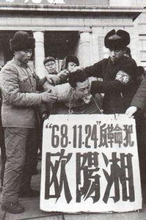mao65